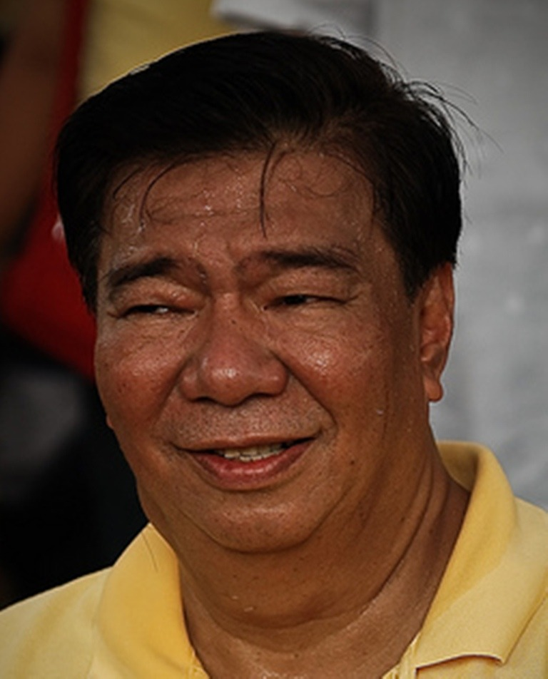 PROFILE: Franklin M. Drilon