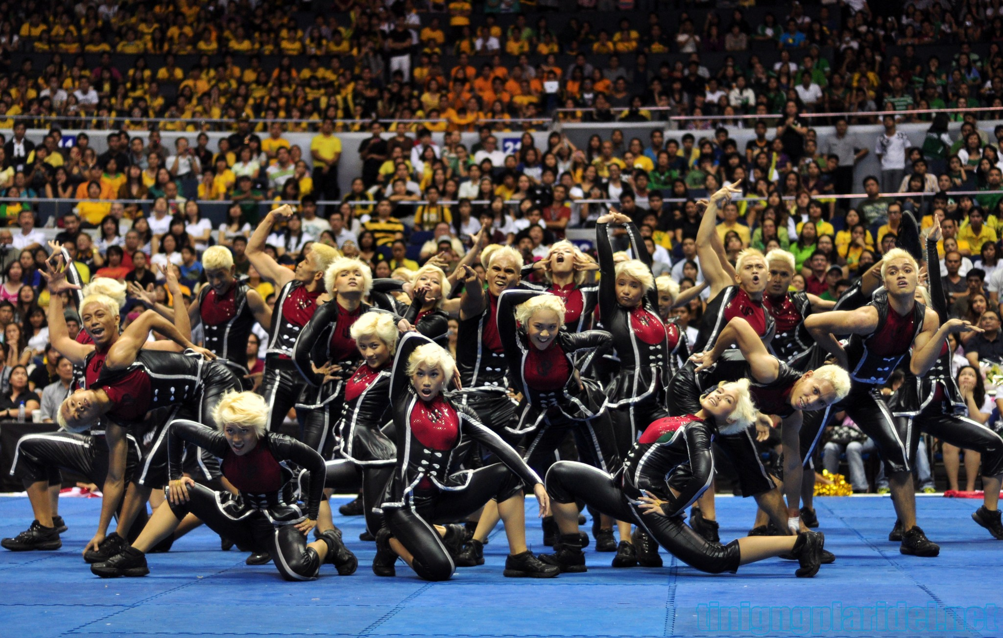 In Focus: UP Pep Squad takes three-for-three