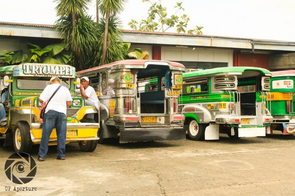 Drivers brought their jeepneys to the Community Affairs compound for reinspection on Monday. PHOTO BY Mariel Urbiztondo, UP Aperture
